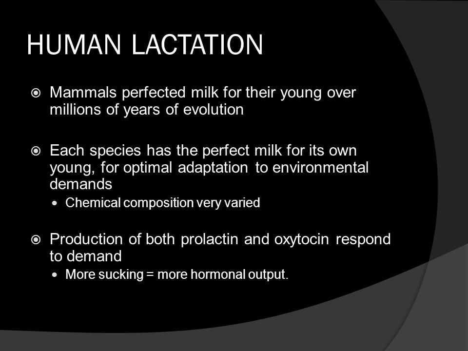HUMAN LACTATION Mammals perfected milk for their young over millions of years of evolution.
