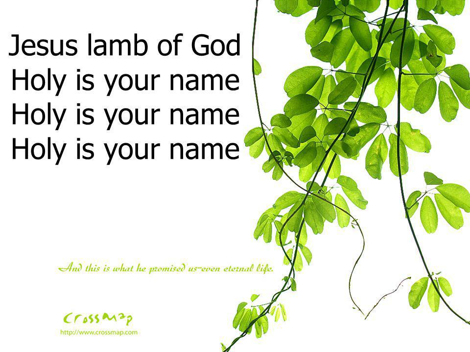 Jesus lamb of God Holy is your name Holy is your name Holy is your name