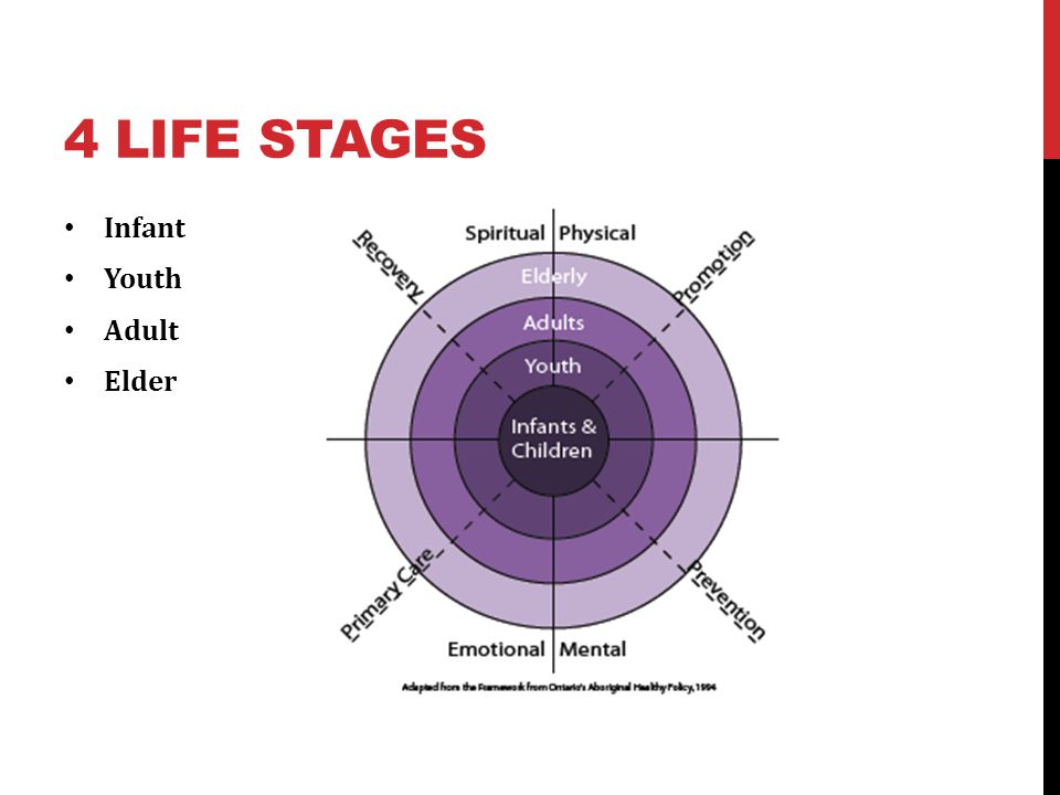 4 Life Stages Infant Youth Adult Elder