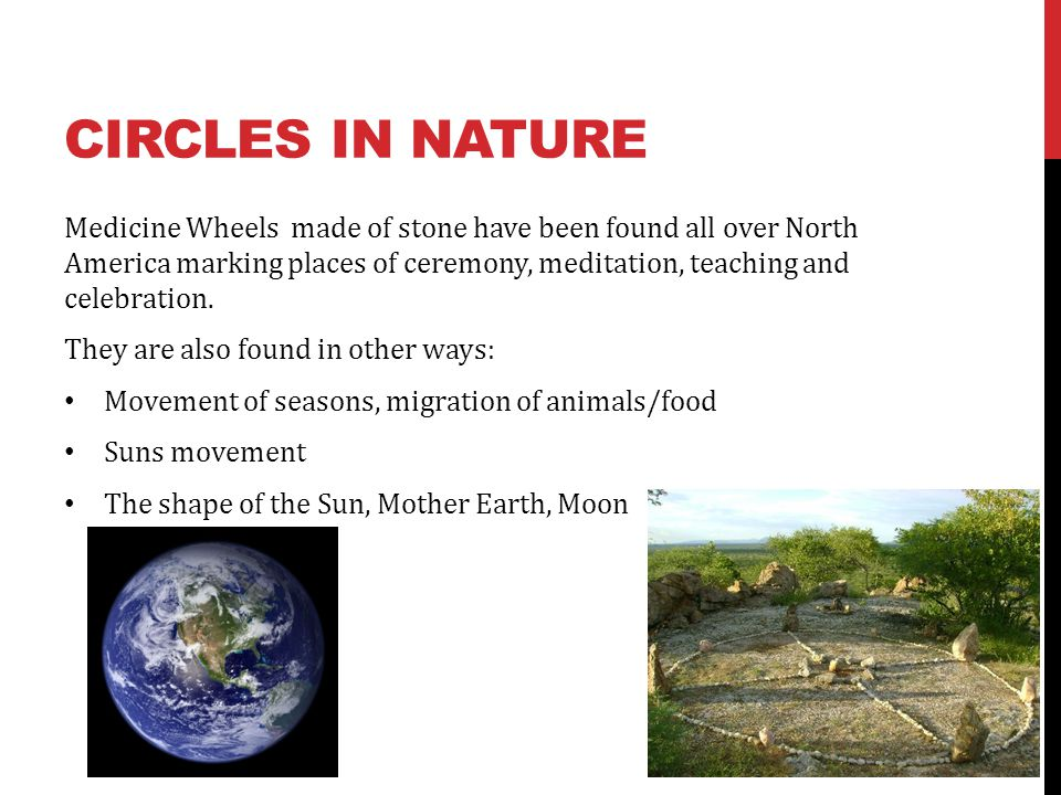 Circles in nature