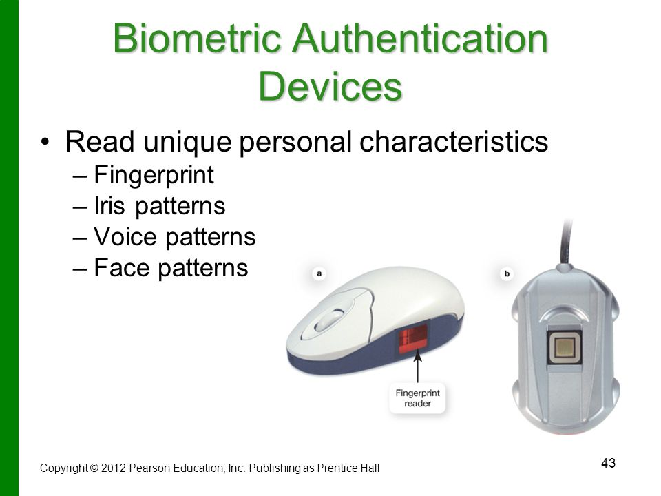 Biometric Authentication Devices