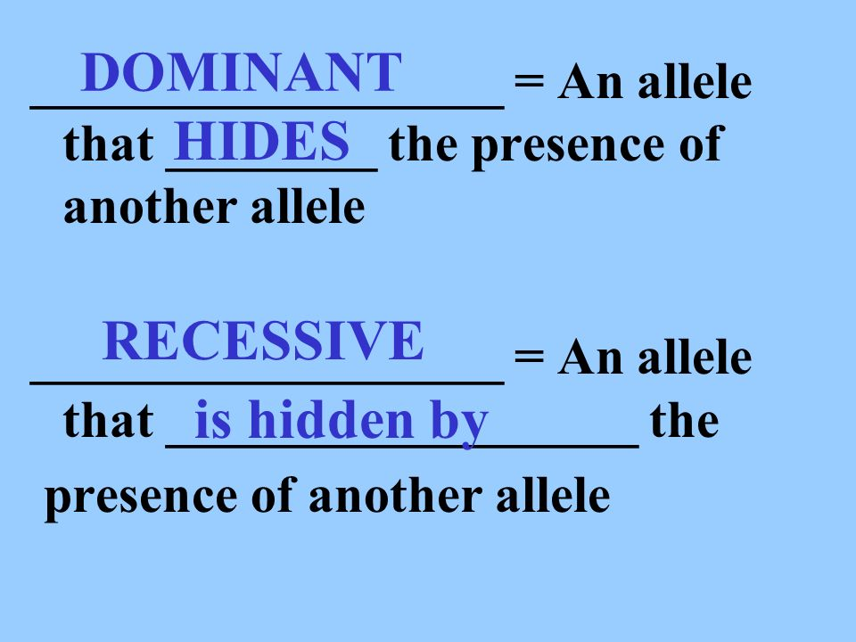 DOMINANT HIDES RECESSIVE is hidden by