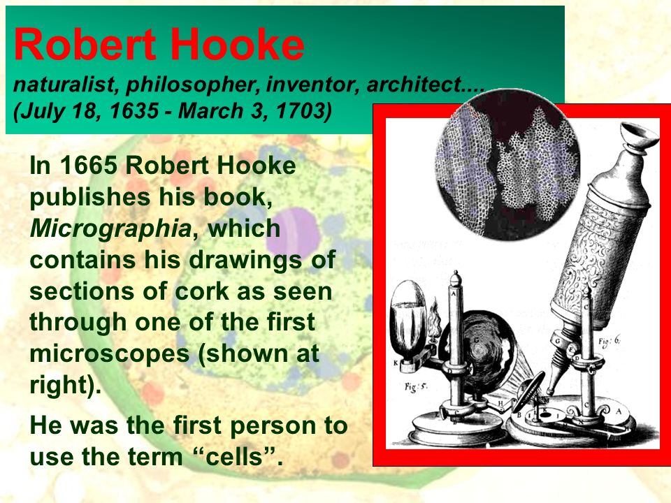 Robert Hooke naturalist, philosopher, inventor, architect