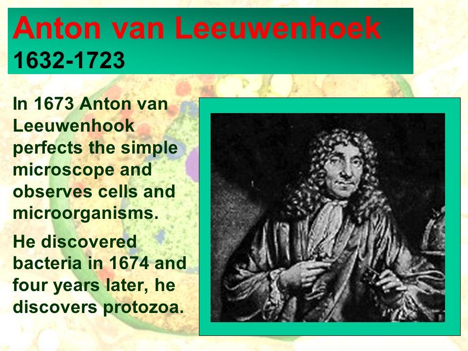 Anton van Leeuwenhoek 1632-1723