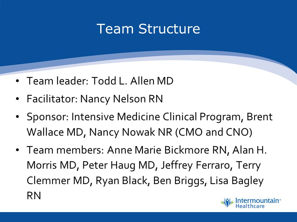 Team Structure Team leader: Todd L. Allen MD