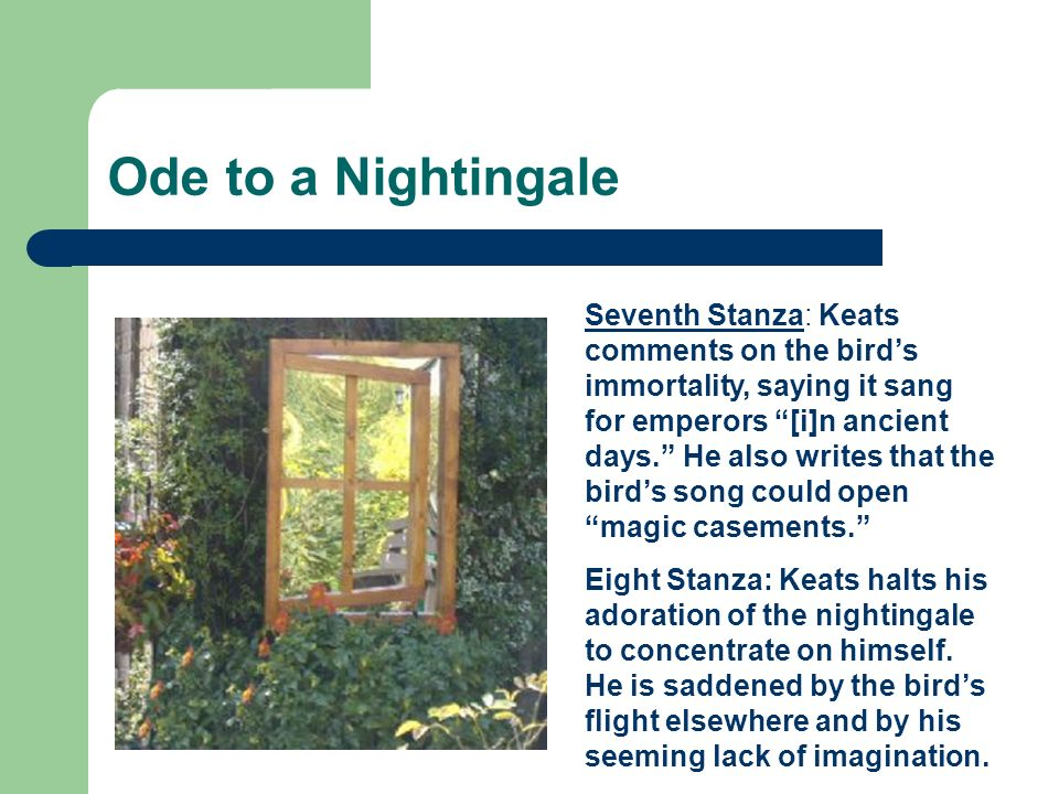 ode to a nightingale analysis essay John keats' ode to a nightingale: an easy publication for a difficult end   when keats finally removed the poem from that place is hard to tell, although we .