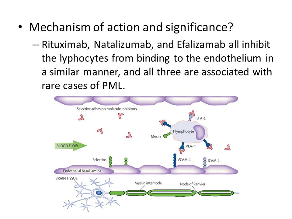 Mechanism of action and significance