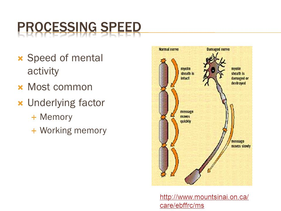 Processing Speed Speed of mental activity Most common