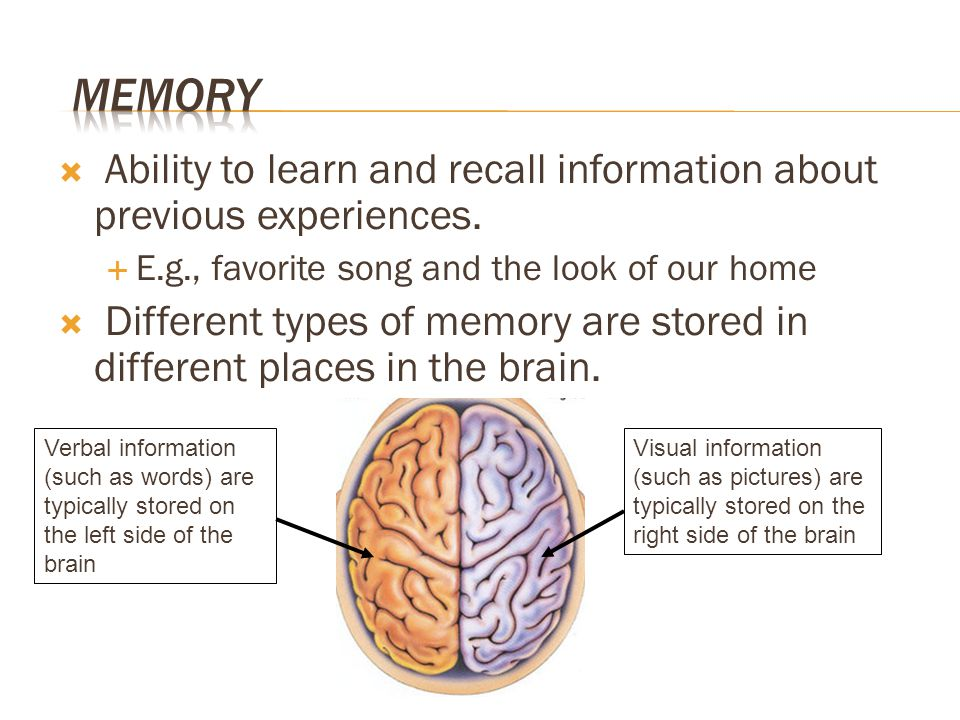 Memory Ability to learn and recall information about previous experiences. E.g., favorite song and the look of our home.