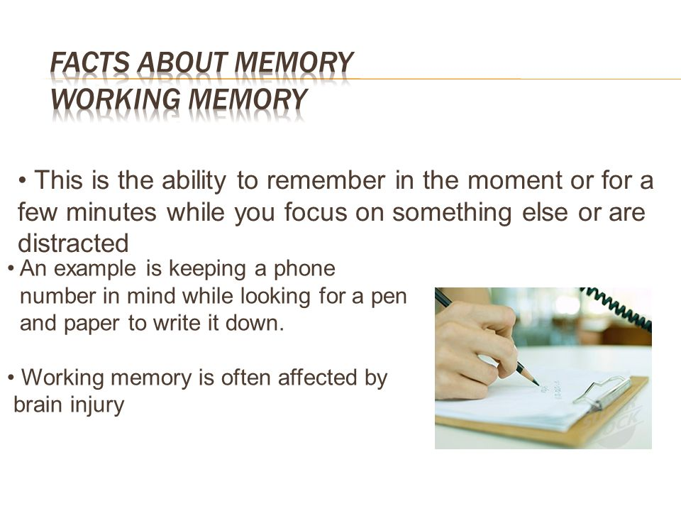 Facts about Memory Working memory