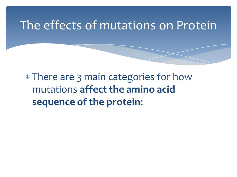 The effects of mutations on Protein