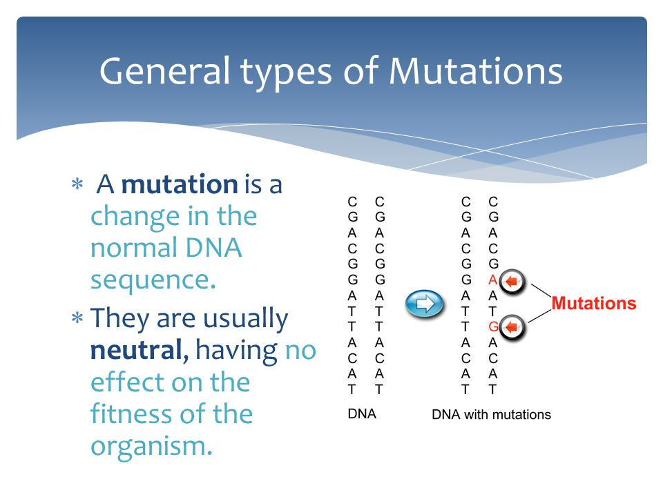 General types of Mutations