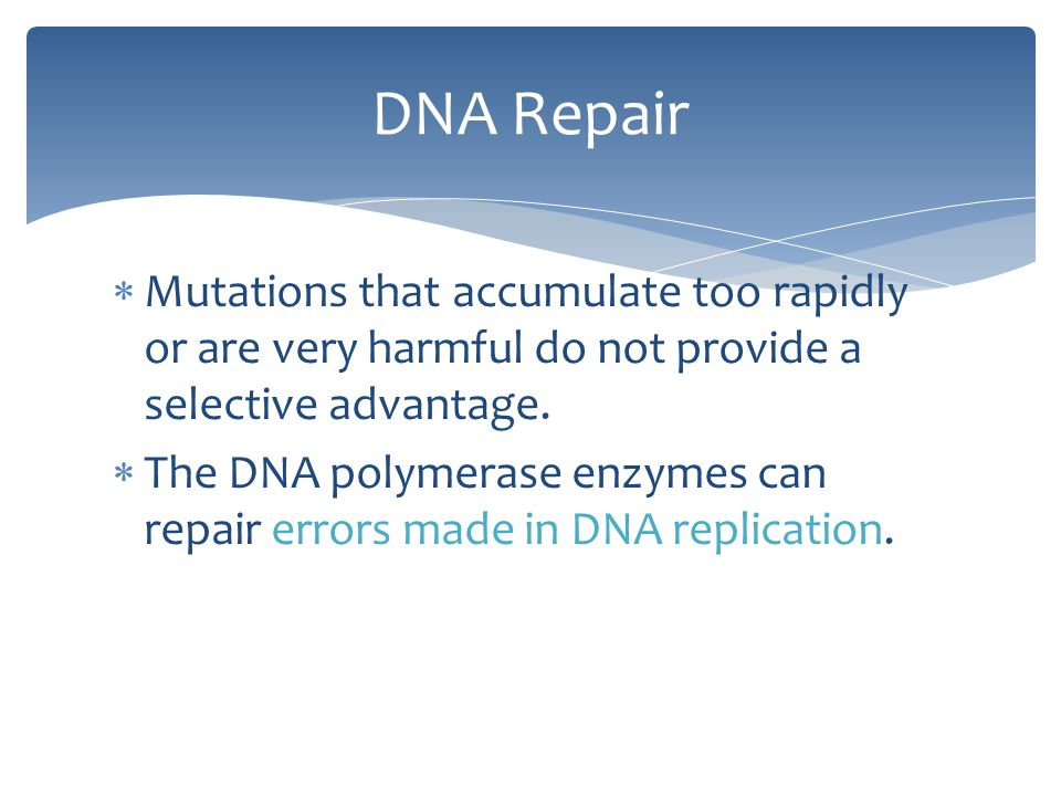 DNA Repair Mutations that accumulate too rapidly or are very harmful do not provide a selective advantage.