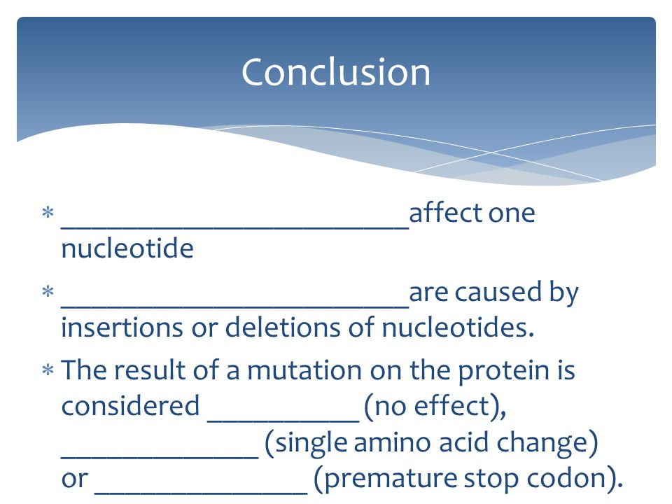 Conclusion _______________________affect one nucleotide