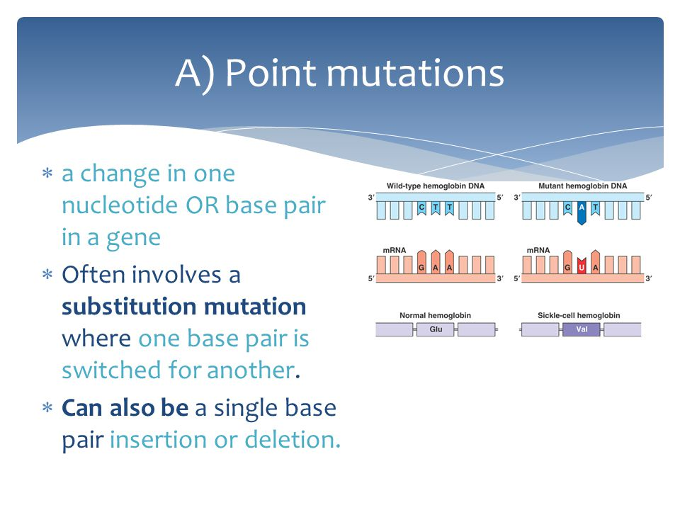 A) Point mutations a change in one nucleotide OR base pair in a gene