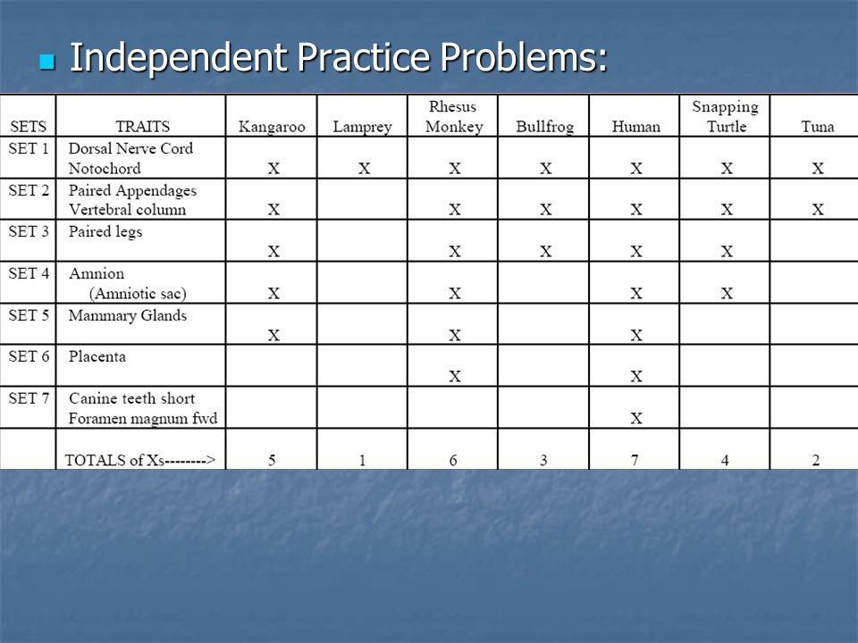 Independent Practice Problems: