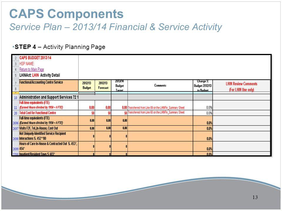 CAPS Components Service Plan – 2013/14 Financial & Service Activity