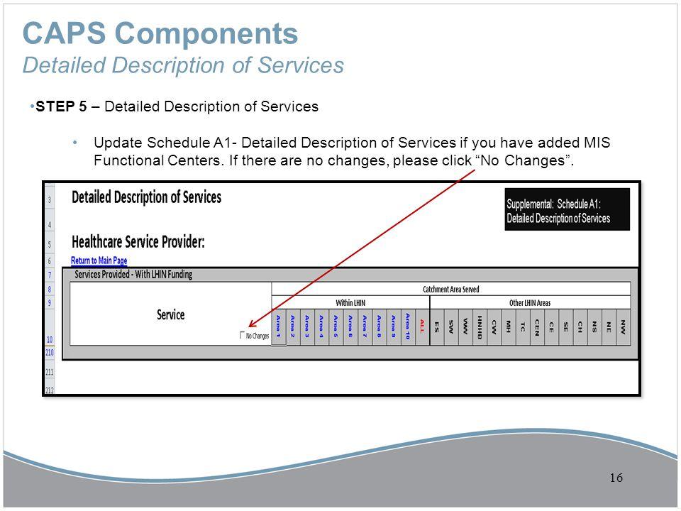 CAPS Components Detailed Description of Services