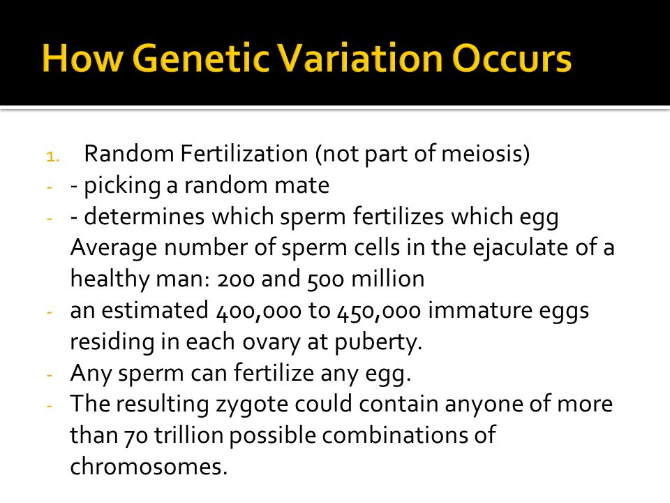 How Genetic Variation Occurs