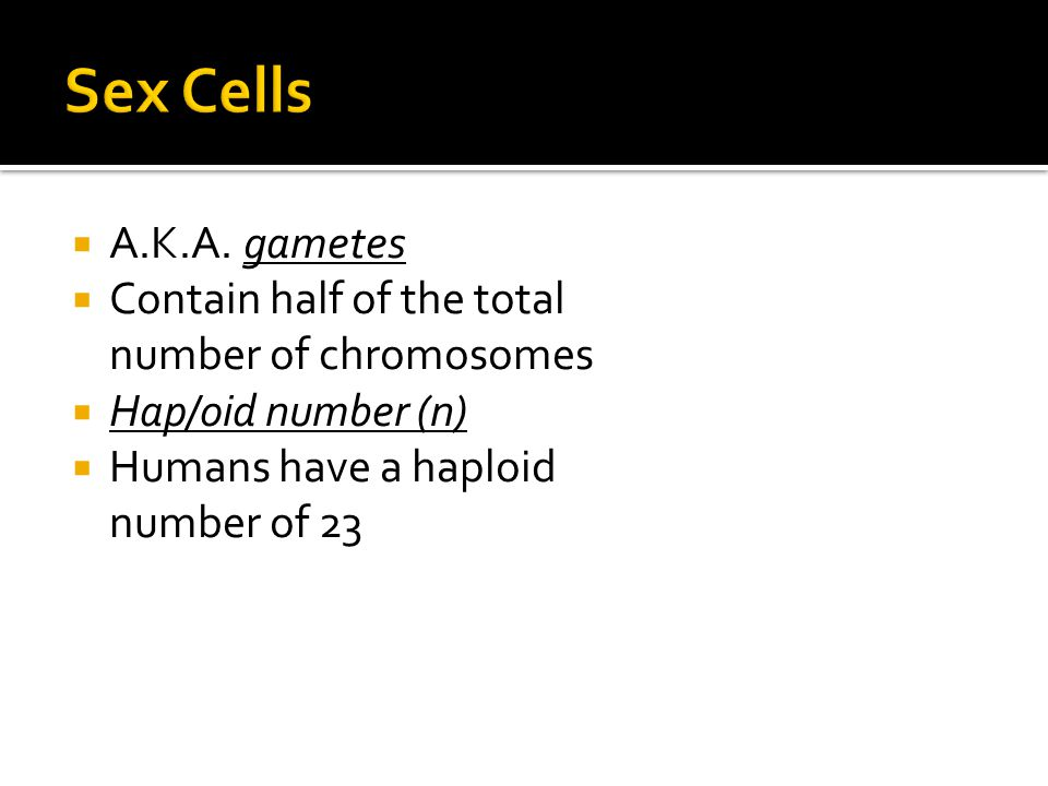 Sex Cells A.K.A. gametes. Contain half of the total number of chromosomes.