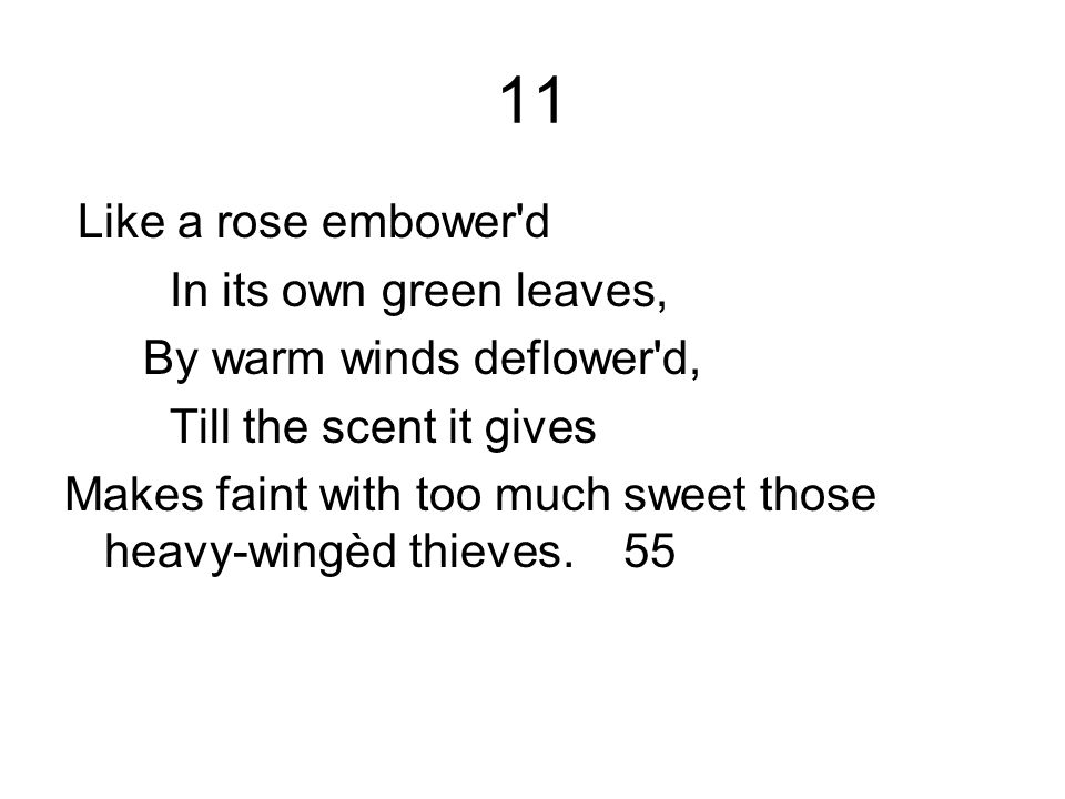 11 Like a rose embower d In its own green leaves,