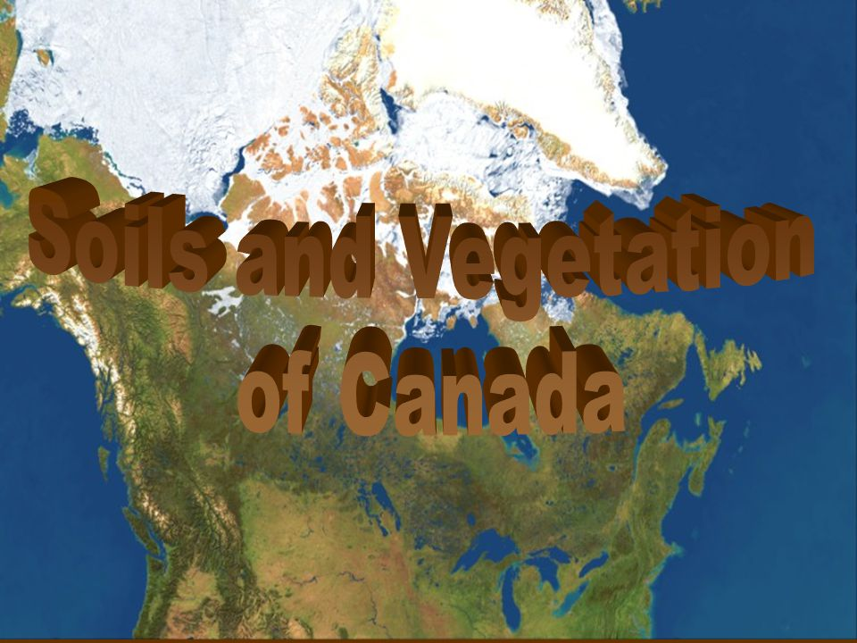 Soils and Vegetation of Canada