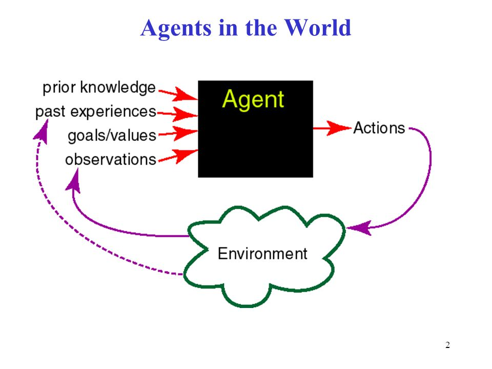 Agents in the World