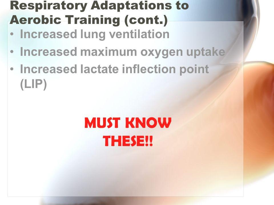Respiratory Adaptations to Aerobic Training (cont.)