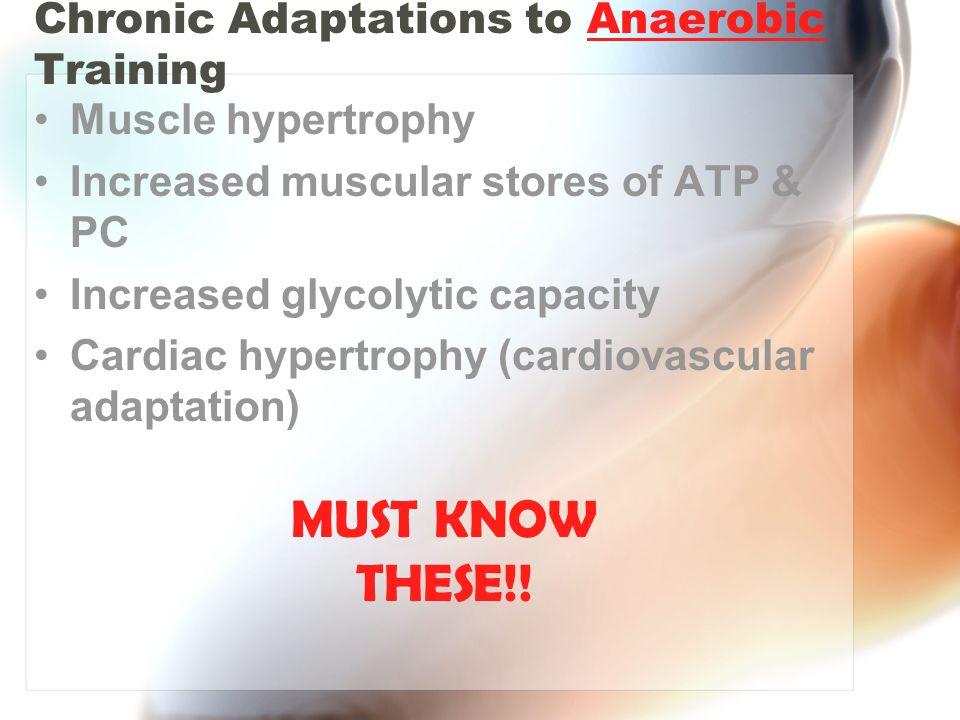 Chronic Adaptations to Anaerobic Training