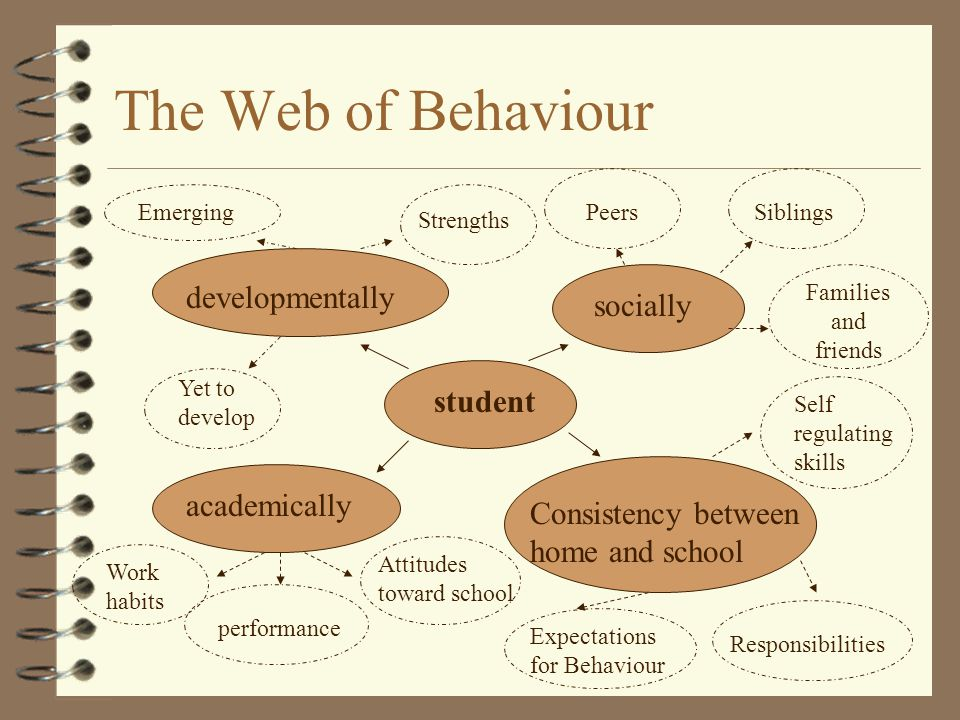 The Web of Behaviour developmentally socially student academically