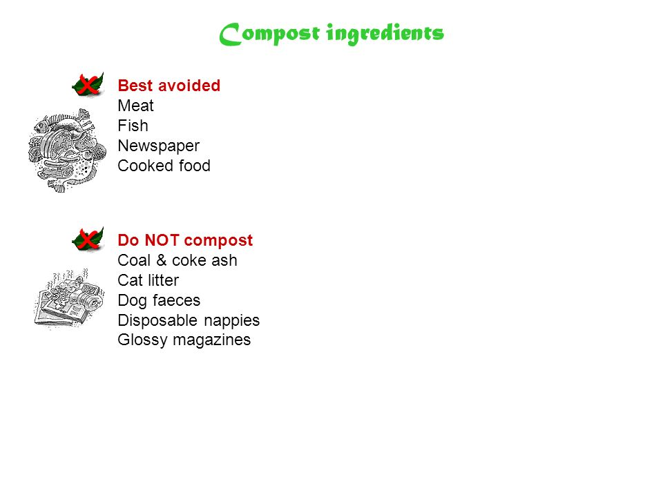 Compost ingredients Best avoided Meat Fish Newspaper Cooked food