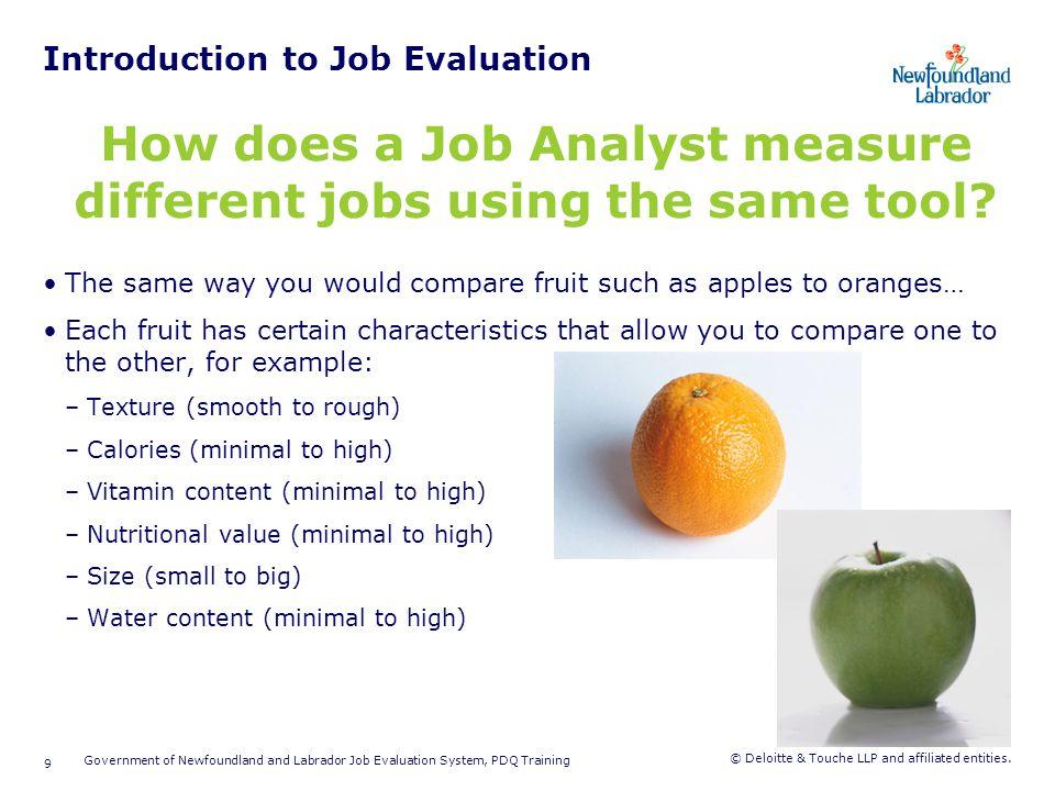 Position Description Questionnaire (PDQ)