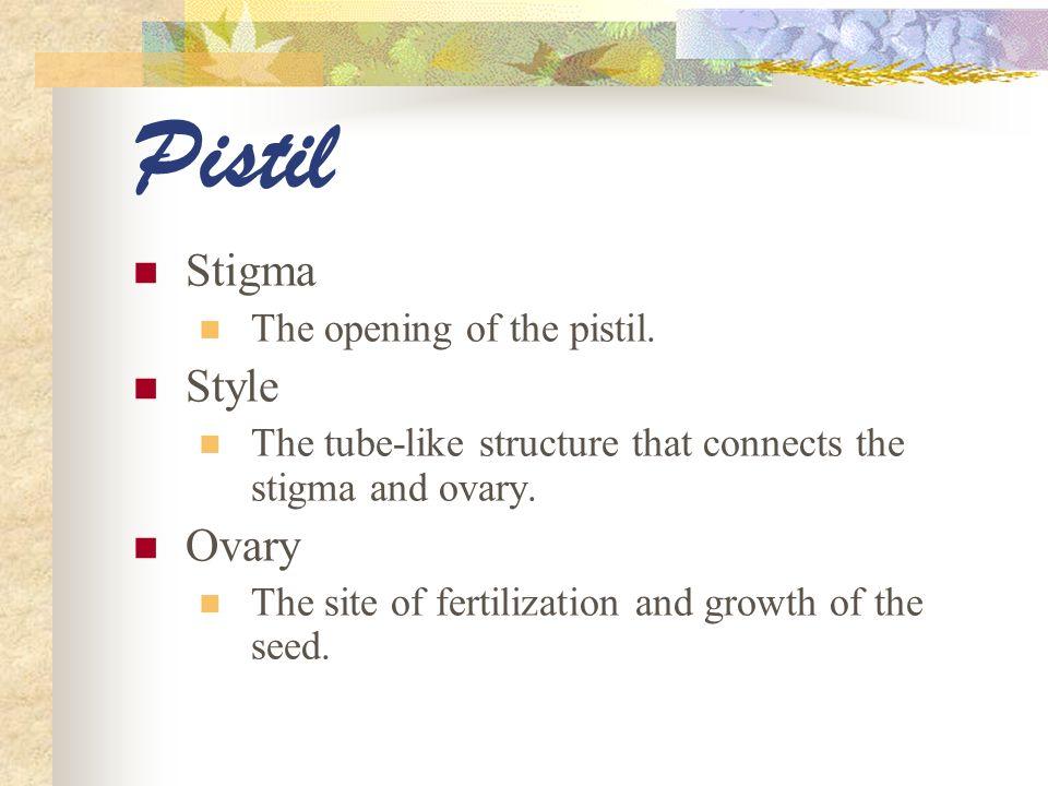 Pistil Stigma Style Ovary The opening of the pistil.