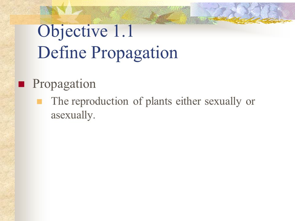 Objective 1.1 Define Propagation