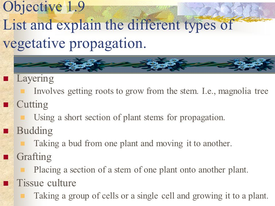 Objective 1.9 List and explain the different types of vegetative propagation.