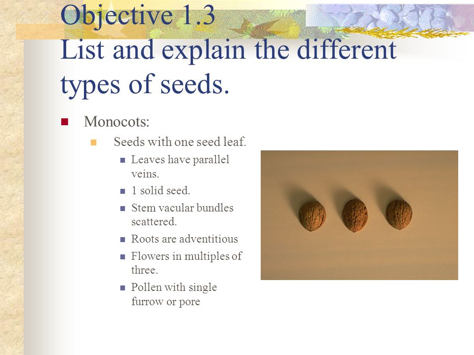 Objective 1.3 List and explain the different types of seeds.