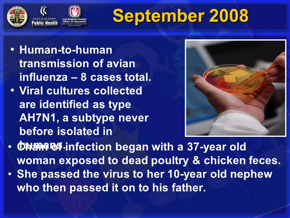 September 2008 Human-to-human transmission of avian influenza – 8 cases total.