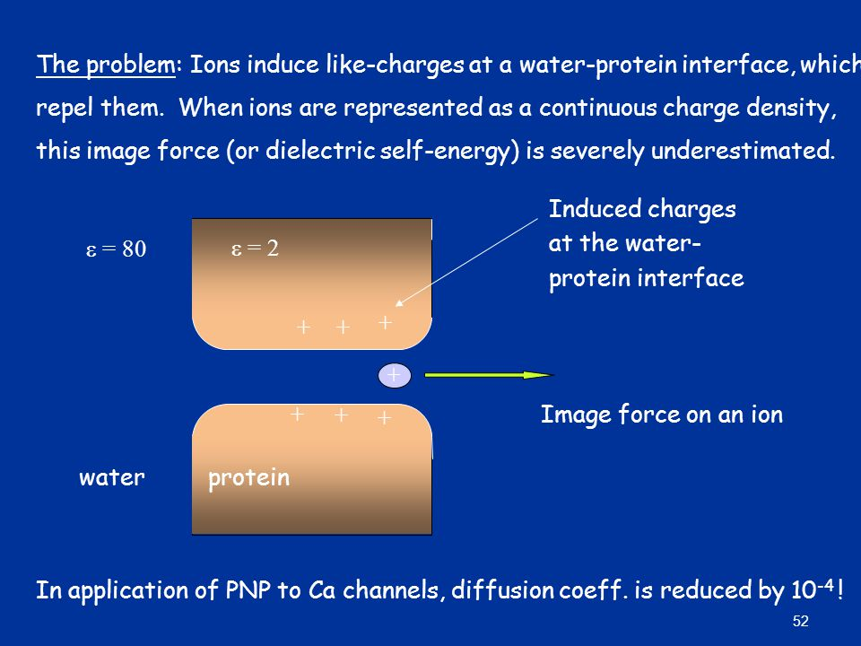 The problem: Ions induce like-charges at a water-protein interface, which