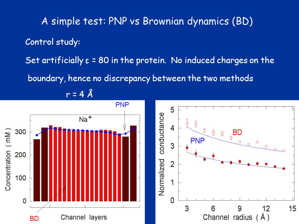 A simple test: PNP vs Brownian dynamics (BD)
