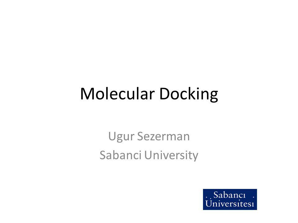 Ugur Sezerman Sabanci University