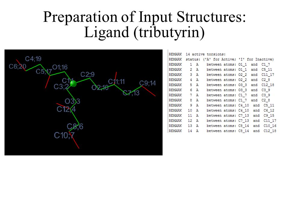 Preparation of Input Structures: Ligand (tributyrin)