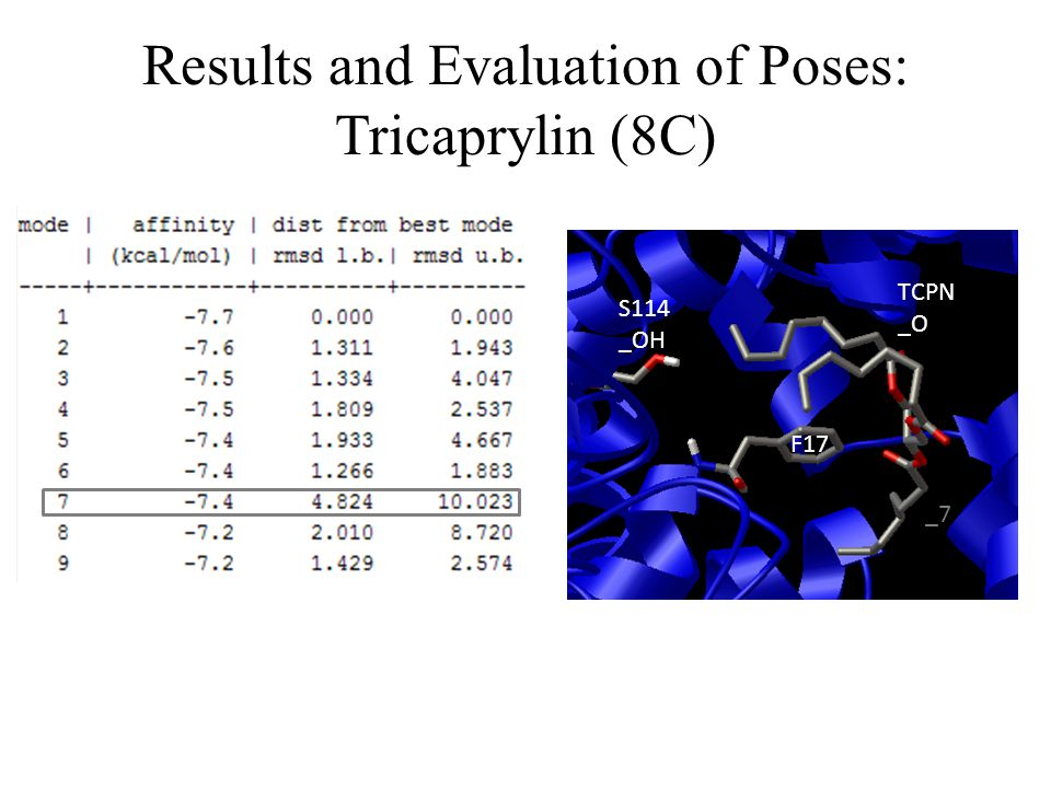 Results and Evaluation of Poses: Tricaprylin (8C)