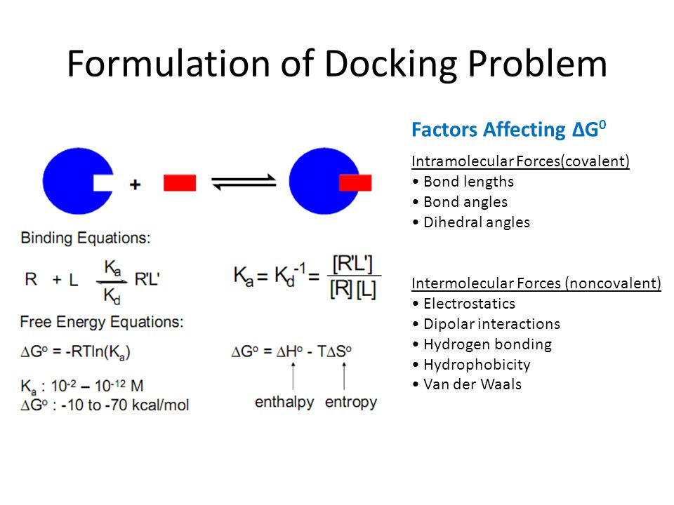 Formulation of Docking Problem