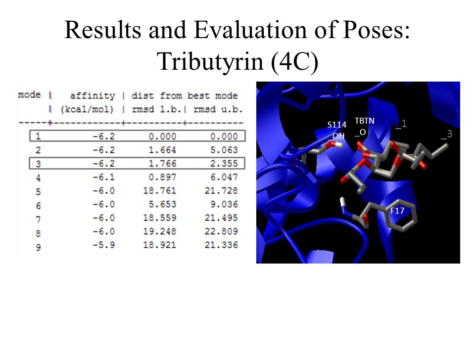 Results and Evaluation of Poses: Tributyrin (4C)