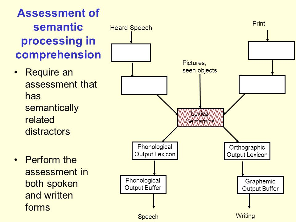 Assessment of semantic processing in comprehension