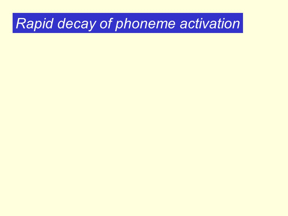 Rapid decay of phoneme activation