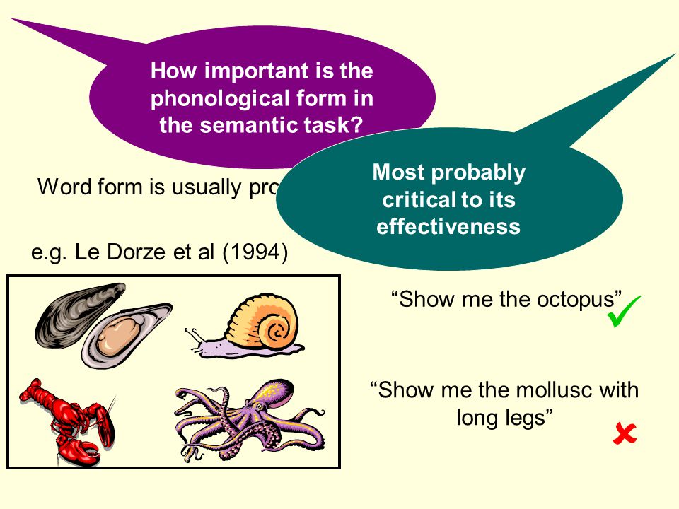   How important is the phonological form in the semantic task