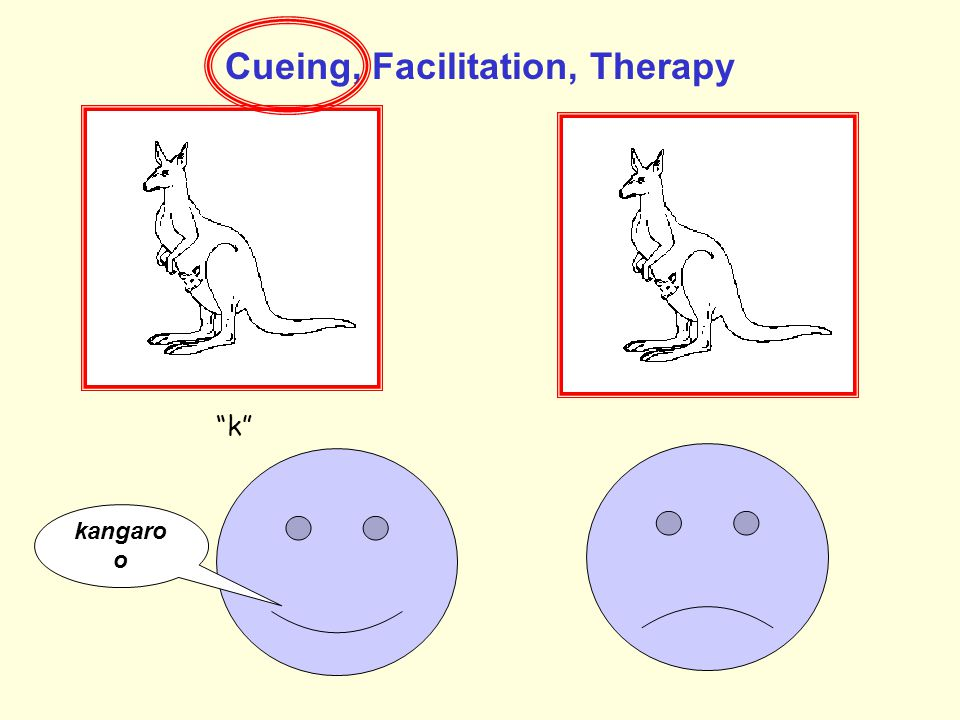 Cueing, Facilitation, Therapy