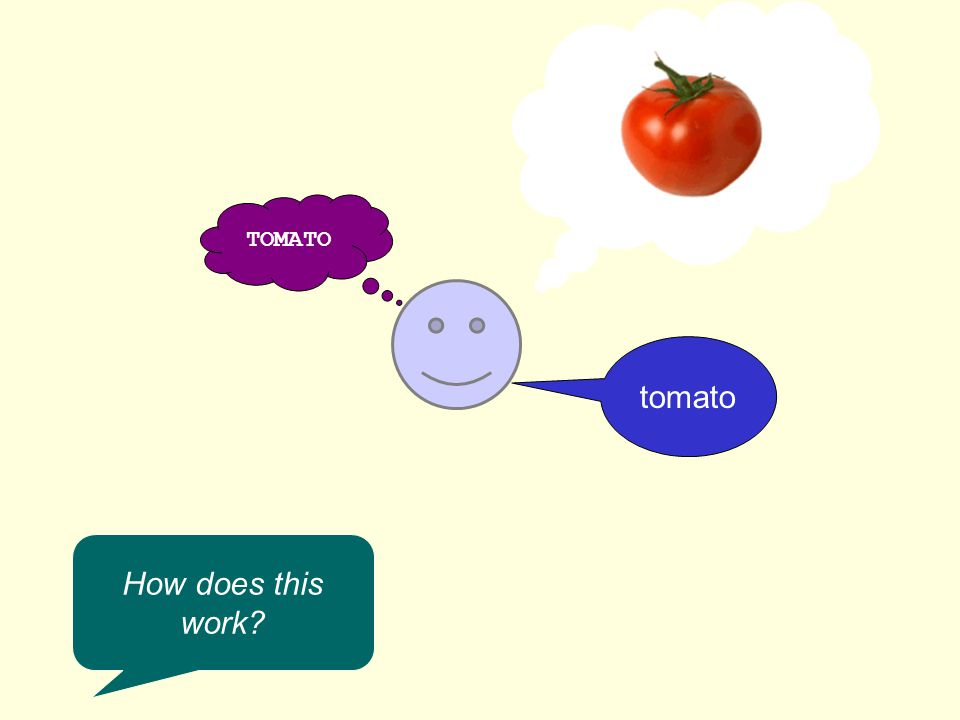 TOMATO tomato How does this work
