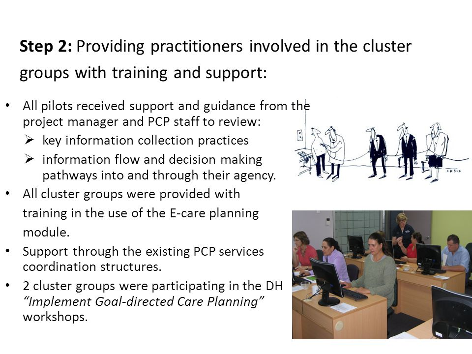 Step 2: Providing practitioners involved in the cluster groups with training and support: